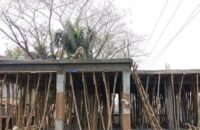 পটুয়াখালীতে প্রথমবারের মতো নির্মান হচ্ছে বঙ্গবন্ধু ডিজিটাল লাইব্রেরি