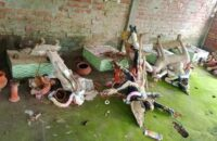 পিরোজপুরে প্রতিমা ভাঙচুর, থানায় মামলা