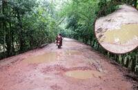 উজিরপুরের লাল শাপলার বিলে যেতে পথে পথে ভোগান্তি