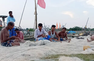 ২২ দিনের নিষেধাজ্ঞা শেষে তজুমদ্দিনের জেলেরা মাছ ধরতে প্রস্তুত