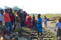মনপুারায় যাত্রীবাহি ট্রলার ডুবি, শিশু সহ আহত ২০ জন