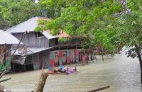বিষখালী নদী এখন আছড়ে পড়েছে লোকালয়ে
